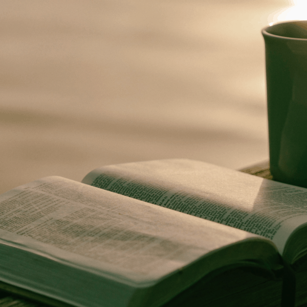 Bible Reading Resources