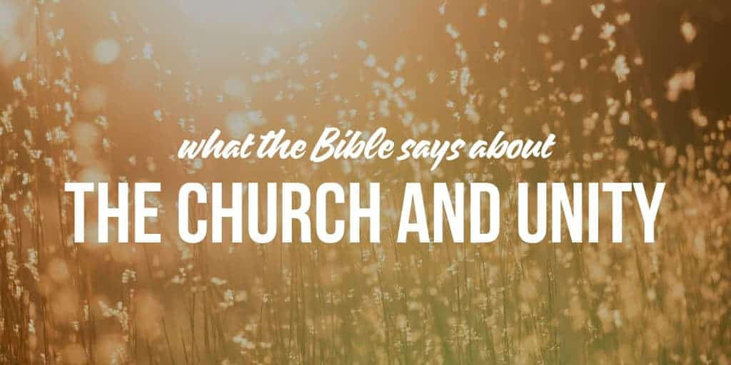 The Church and Unity